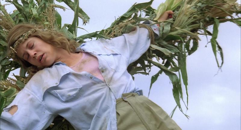 http://watershade.net/public/children-of-the-corn2.jpg