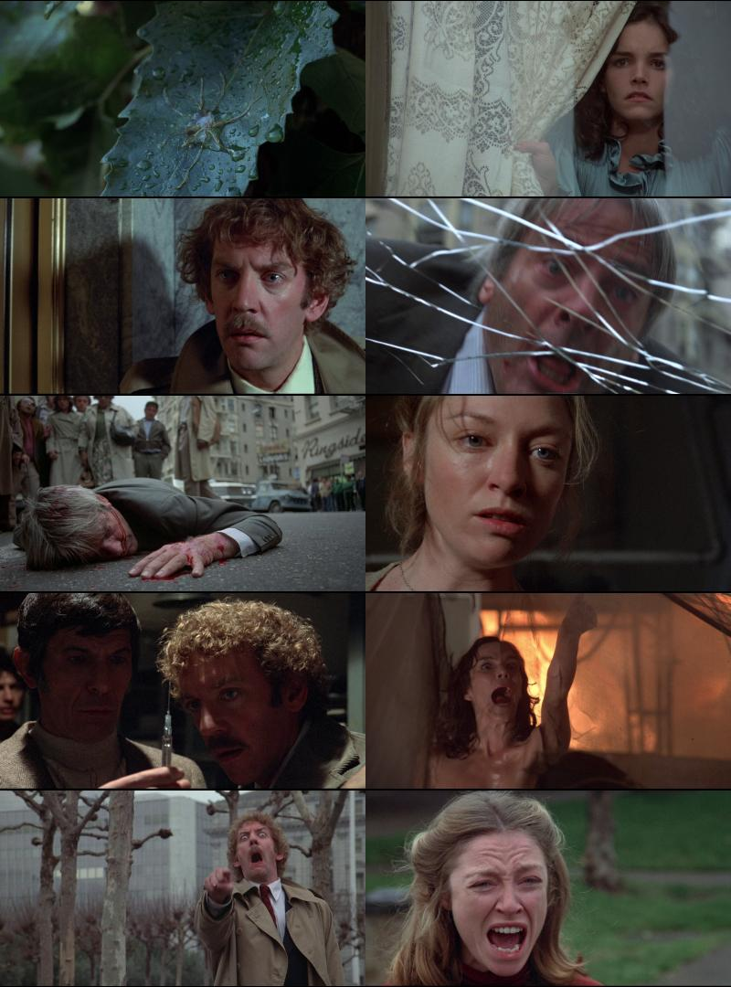 http://watershade.net/public/invasion-of-the-body-snatchers-1978.jpg